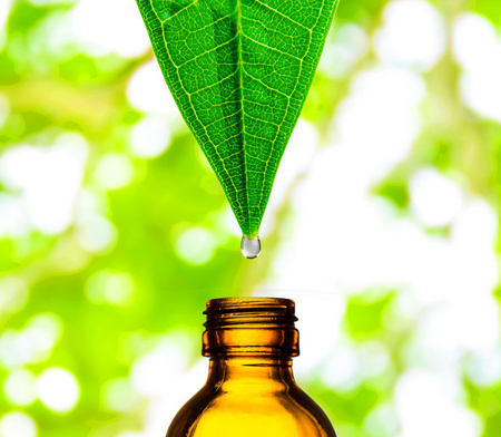 Herbal Extracts Supplier