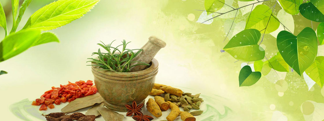 Herbal Extracts Supplier - Manufacturer of Herbal Extracts - Manufacturer  of Phytochemicals - Phytochemicals Manufacturer in Delhi